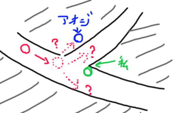 明治神宮のアオジと撮影マナーの位置関係図